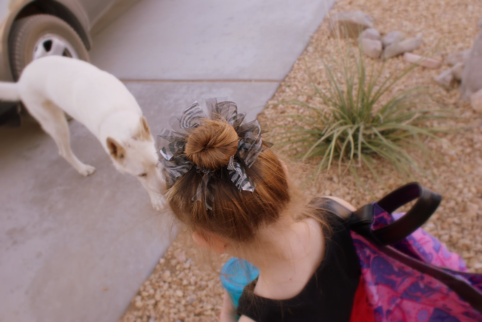 The hair tie is even cute with a messy bun. It just adds a little extra to  her hair ~ do… I just used a regular hair band and added some strips of  tulle ... 55368cd3610